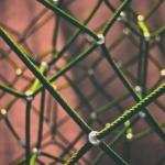 API Management Essentials: Strategies and Tools