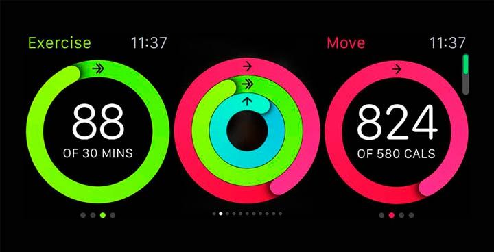 apple watch charts