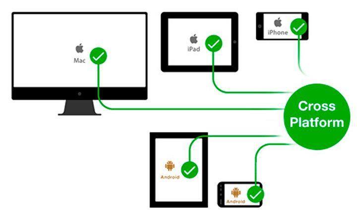 cross platform vs responsive vs native app