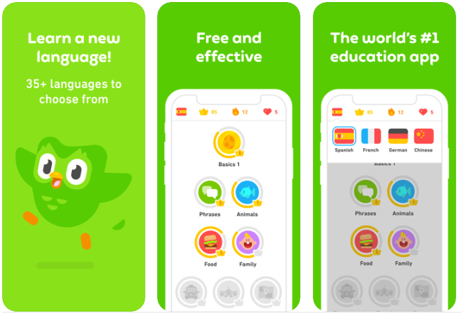 how to create a language learning app