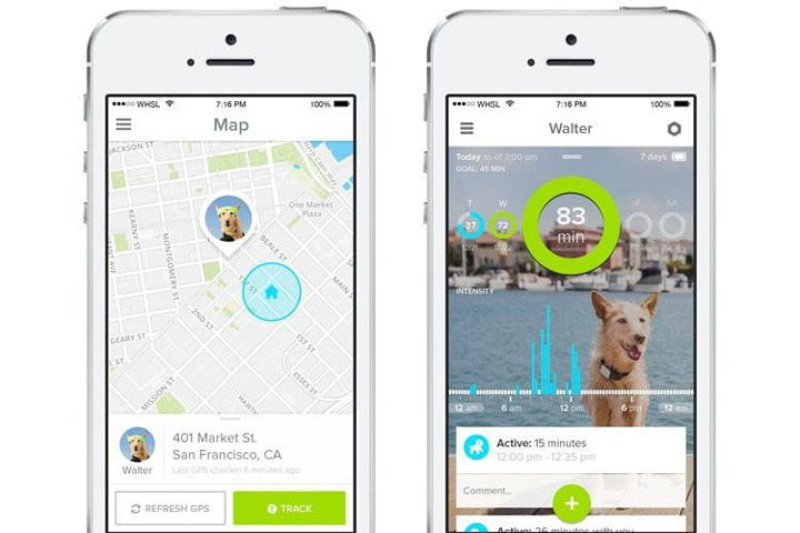 iot app for pets