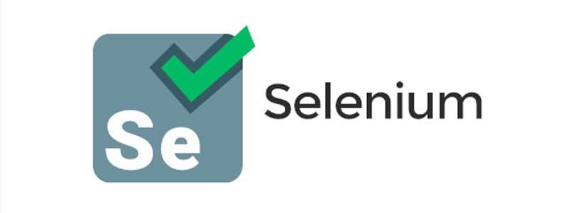 selenium website testing